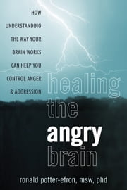 Healing the Angry Brain - How Understanding the Way Your Brain Works Can Help You Control Anger and Aggression ebook by Ronald Potter-Efron, MSW, PhD