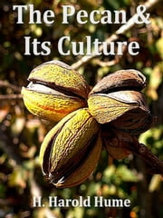 The Pecan and its Culture ebook by H. Harold Hume