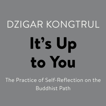 It's Up to You - The Practice of Self-Reflection on the Buddhist Path audiobook by Dzigar Kongtrul
