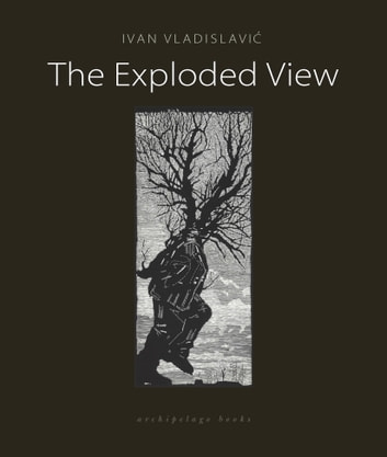The Exploded View eBook by Ivan Vladislavic