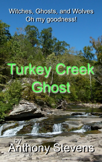 Turkey Creek Ghost ebook by Anthony Stevens