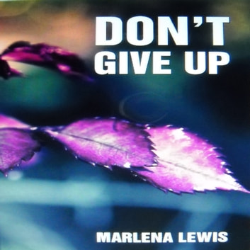 Don't Give Up audiobook by Marlena Lewis