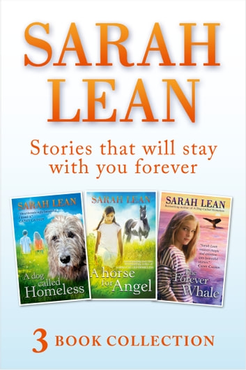 Sarah Lean 3 Book Collection A Dog Called Homeless A Horse For