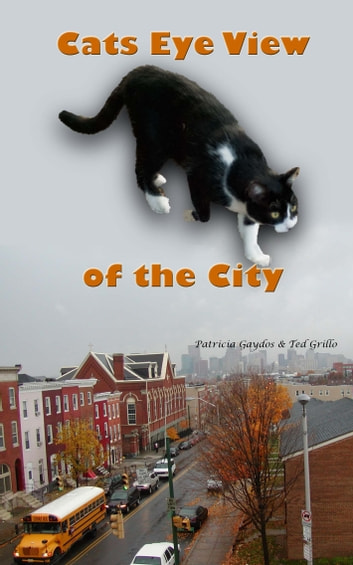 A Cat's Eye View of the City ebook by Patricia Gaydos