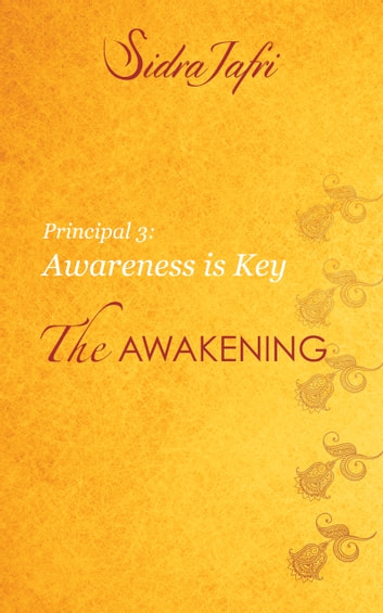 Awareness is Key eBook by Sidra Jafri