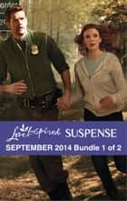Love Inspired Suspense September 2014 - Bundle 1 of 2 - Danger at the Border\Desperate Measures\Star Witness ebook by Terri Reed, Christy Barritt, Lisa Phillips