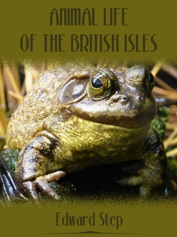 Animal Life of the British Isles (Illustrated) ebook by Edward Step