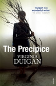 The Precipice ebook by Virginia Duigan