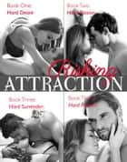 Risking Attraction Series - Contemporary Romance ebook by Lucia Jordan
