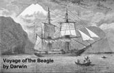 The Voyage of the Beagle, Or a Naturalist's Voyage Round the World ebook by Darwin,Charles