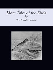 More Tales of the Birds ebook by W. Warde Fowler