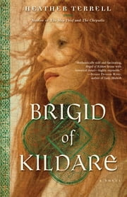Brigid of Kildare - A Novel ebook by Heather Terrell