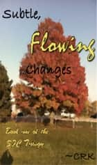 Subtle, Flowing Changes ebook by ~CRK