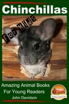 Chinchillas: For Kids - Amazing Animal Books For Young Readers ebook by John Davidson