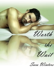 Worth the Wait ebook by Sara Winters