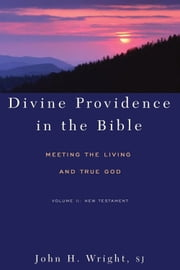 Divine Providence in the Bible: Meeting the Living and True God Volume II: New Testament ebook by John H. Wright SJ