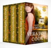 Southern Fiction Box Set - 3 Historical Family Sagas Set in the South ebook by Vera Jane Cook