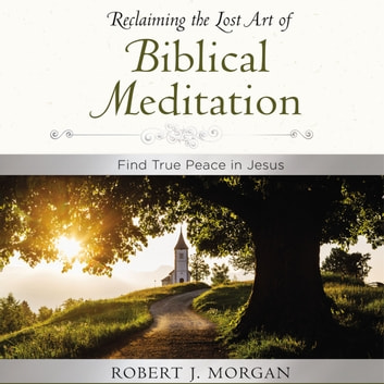 Moments of Reflection: Reclaiming the Lost Art of Biblical Meditation - Find True Peace in Jesus audiobook by Robert Morgan
