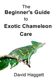 The Beginner's Guide to Exotic Chameleon Care ebook by David Haggett