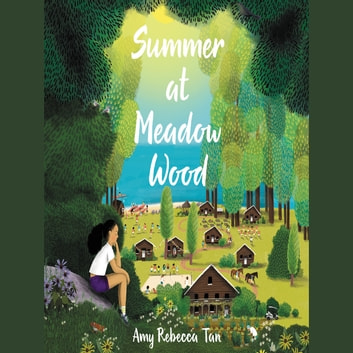 Summer at Meadow Wood audiobook by Amy Rebecca Tan