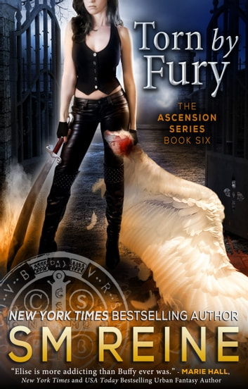 Torn by Fury - An Urban Fantasy Novel ebook by SM Reine