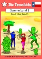 Die Texaskids -Sammelband 1 - Band 1 bis Band 3 ebook by Heike Noll