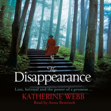 The Disappearance audiobook by Katherine Webb