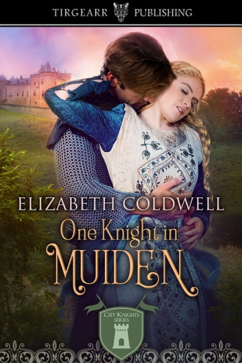 One Knight in Muiden ebook by Elizabeth Coldwell