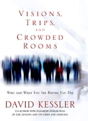 Visions Trips And Crowded Rooms ebook by David Kessler