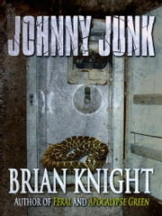 Johnny Junk ebook by Brian Knight