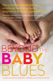 Beyond the Baby Blues 2nd Edition ebook by Benison O'Reilly,Seana Smith,C Knox