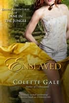 Enslaved - The City of Amazonia ebook by Colette Gale