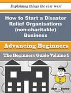 How to Start a Disaster Relief Organisations (non-charitable) Business (Beginners Guide) ebook by Maegan Beauregard