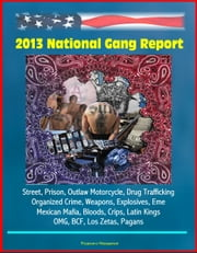 2013 National Gang Report: Street, Prison, Outlaw Motorcycle, Drug Trafficking, Organized Crime, Weapons, Explosives, Eme, Mexican Mafia, Bloods, Crips, Latin Kings, OMG, BCF, Los Zetas, Pagans ebook by Progressive Management