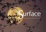 Surface - land/water and the visual arts symposium 2004 ebook by Simon Standing