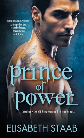 Prince of Power ebook by Elisabeth Staab