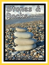 Just Stone & Rock Photos! Big Book of Photographs & Pictures of Rocks & Stones, Vol. 1 ebook by Big Book of Photos