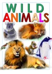 Wild Animals - From A to Z ebook by Daniel Coenn (illustrator)