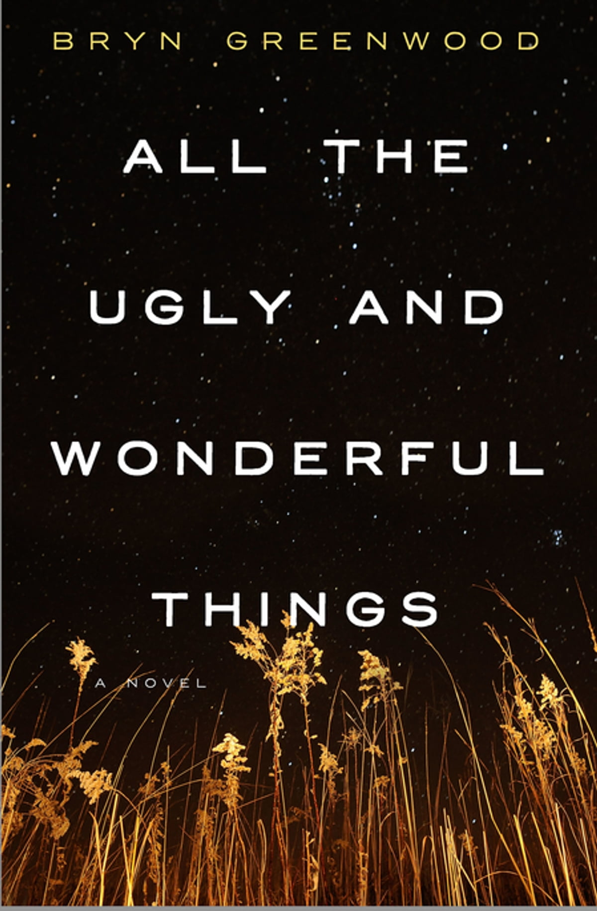 All The Ugly And Wonderful Things  A Novel Ebook By Bryn Greenwood