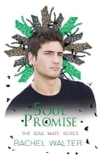 Soul Promise ebook by Rachel Walter