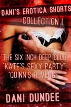 Dani's Erotica Shorts Collection I - Quickies!, #4 ebook by Dani Dundee