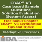 CBAP V3 Case study based question - Solution Evaluation - 1 ebook by LN Mishra
