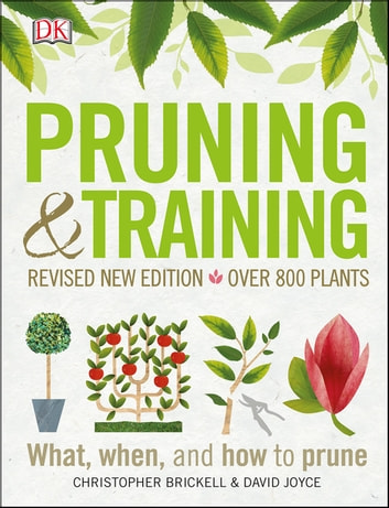 Pruning and Training eBook by DK