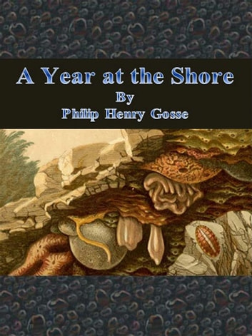 A Year at the Shore ebook by Philip Henry Gosse