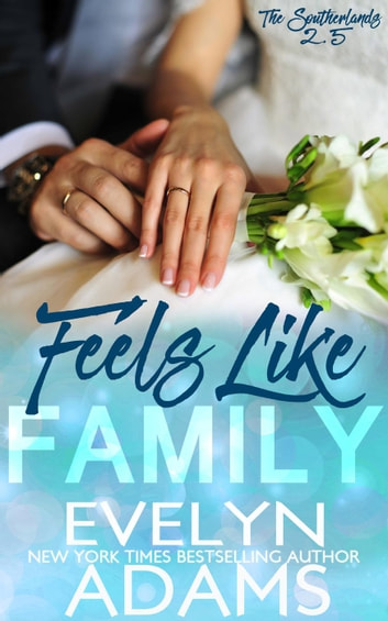 Feels Like Family - The Southerlands ebook by Evelyn Adams