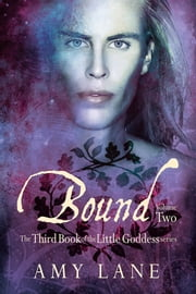 Bound, Vol. 2 ebook by Amy Lane