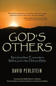God's Others - Non-Israelites' Encounters With God in the Hebrew Bible ebook by David Perlstein