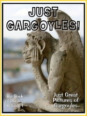 Just Gargoyle Photos! Big Book of Photographs & Pictures of Gargoyle Statues, Vol. 1 ebook by Big Book of Photos