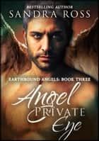 Angel Private Eye (Complete): Earthbound Angels 3 ebook by Sandra Ross