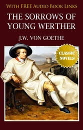 the sorrows of young werther essay